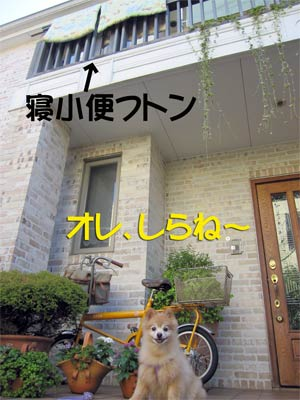 925_7.jpg