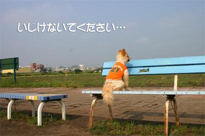 run_3.jpg