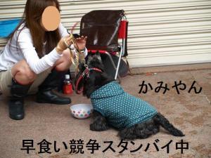 かみやんスタンバイ!!
