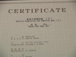 家庭犬訓練試験 CD1
