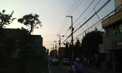 20061012161016.jpg