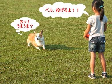 6.27ベルちゃんベル姉