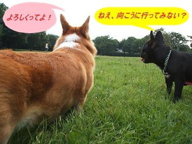 6.27ペコちゃん4