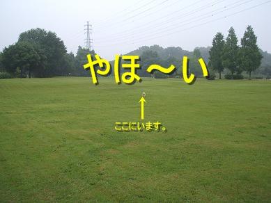 7.4風景