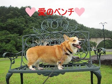 愛のベンチ
