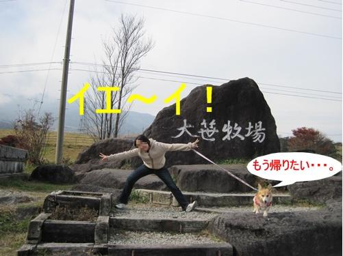 大笹牧場44