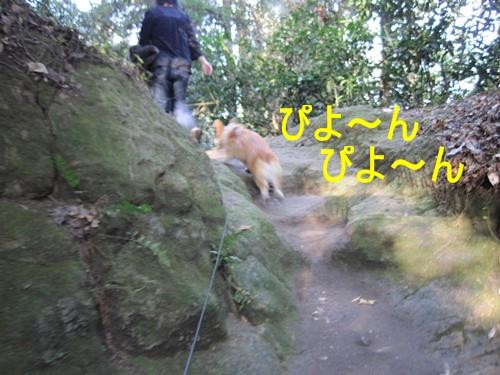 鎌倉山24