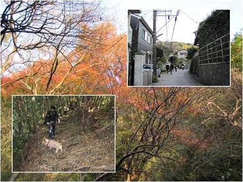 鎌倉山23