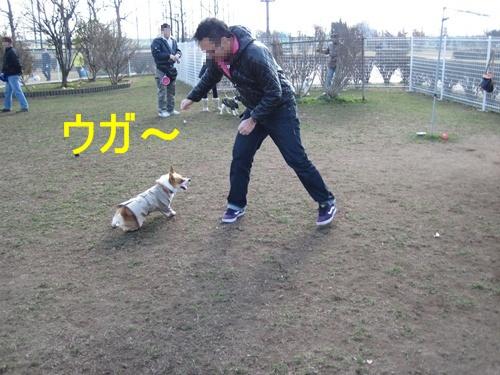 WINちゃん15