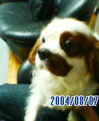 20050831102039.jpg