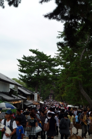 東大寺参道