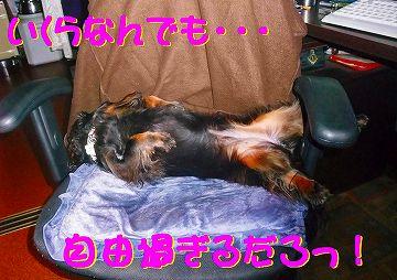 ΣΣ(・ω´・lll) え?