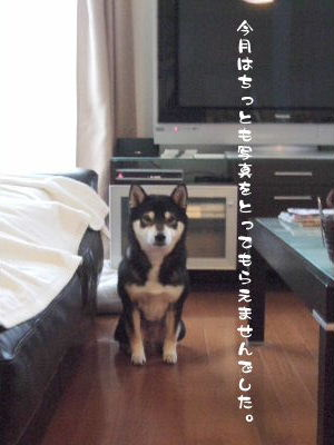 2009_0227_152028.jpg