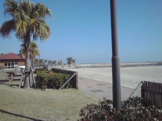 サンビーチ 一ツ葉