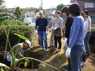 20061103芋掘り_2