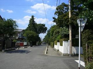 20070812盆栽町3.JPG
