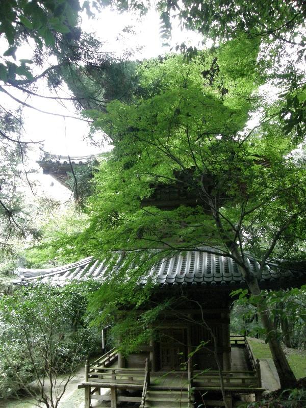 西山興隆寺 紅葉