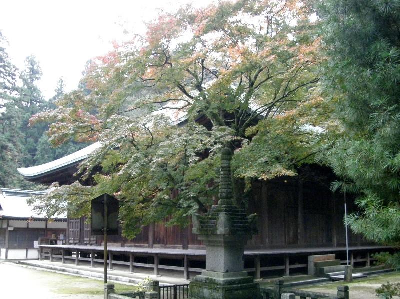 西山興隆寺の紅葉