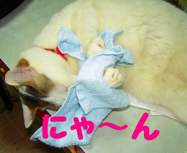 愛ちゃん 046 - コピー
