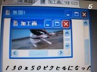 20080826 の映像 030m