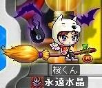 Maple00031105.jpg