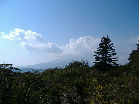 081003-7.jpg