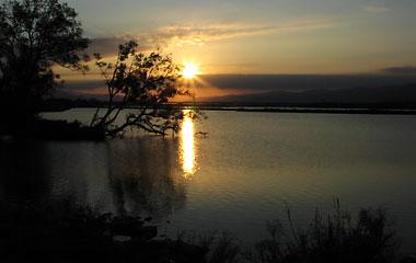 吉野川の夕日3