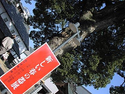 新しい春の器展2007
