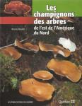 Les_champignons__des_arbres.jpg