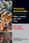 Tanzanian_Mushroomss.jpg