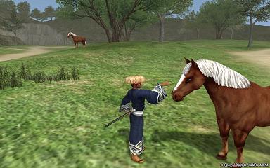馬にえさやり?