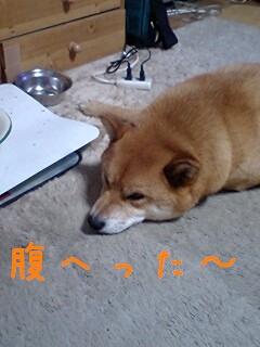 GRP_0000あ