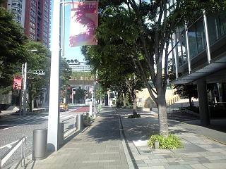 ヒルズ道(2)
