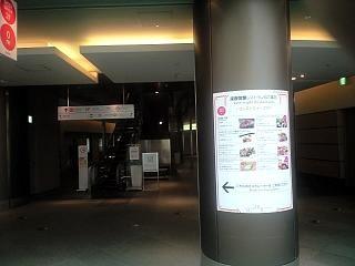 ヒルズ道(9)