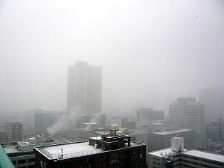雪景色(その3)