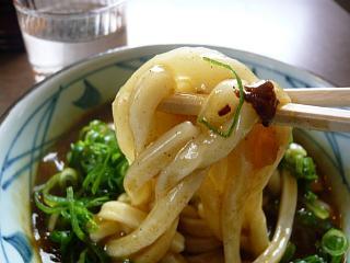 丸亀製麺(カレーうどんヲタ撮り)