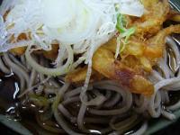 鈴しげ(冷やし天蕎麦2)