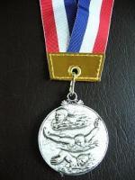銀メダル2