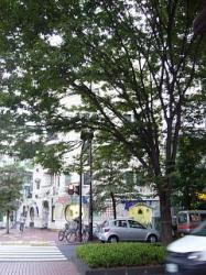 早稲田界隈(ガウディマンション)