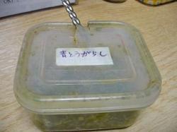 がんこ西早稲田(つけラー・青唐辛子)