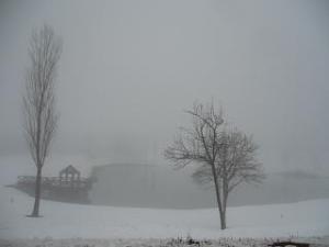 十日町(霧の風景2)