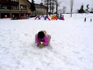 雪景色(その2 雪だるま)