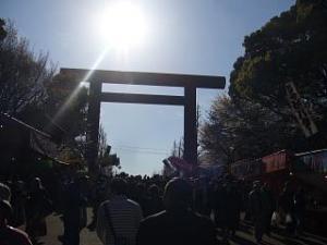 桜(靖国神社1)