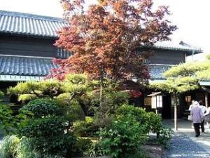 山田家(植え込み1)