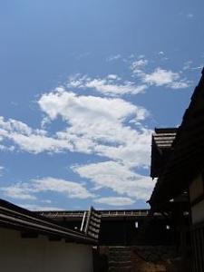 風林火山セット(青空5)