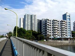 港南地区(風景 橋)