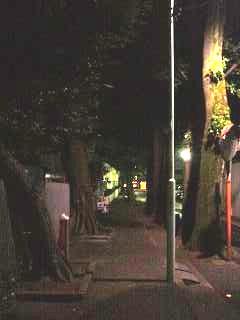 三田(夜景4)