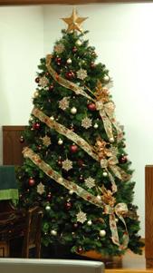 tree20081118-3.jpg