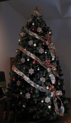 tree20081122-2.jpg