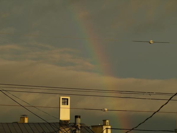 二日も続けて虹!!嬉しい~♪